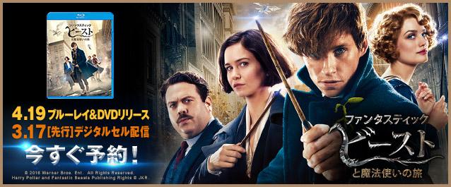 「ファンタスティック・ビーストと魔法使いの旅」DVD&BD