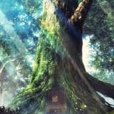 TVアニメ「異世界食堂」今夏スタート!幻想的なキービジュアル公開