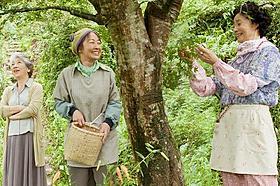 ベテラン女優3人が共演「人生、いろどり」