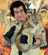 藤岡弘、探検隊経験生かし子ライオンと対決し名誉の負傷「本能的に急所を知っている」