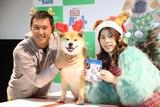 吉田沙保里、初対面の人気犬・柴犬まるにメロメロ「むっちゃかわいいー!」