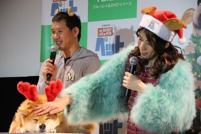吉田沙保里、初対面の人気犬・柴犬まるにメロメロ「むっちゃかわいいー!」 - 画像8