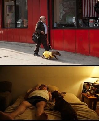 個性派俳優ダニー・デビートが存在感を発揮「トッド・ソロンズの子犬物語」
