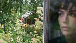 「マイ ビューティフル ガーデン」の一場面