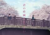 浜辺美波&北村匠海「君の膵臓をたべたい」切なすぎる特報完成!