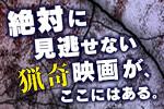 DVD・ブルーレイ特集