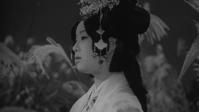 ひばり姫 初夢道中