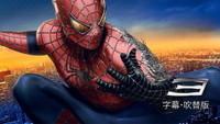 スパイダーマン™ 3
