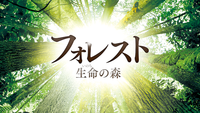 フォレスト 生命(いのち)の森